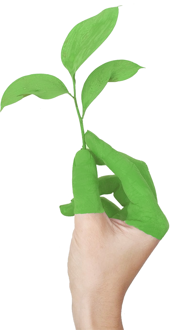 Hand with leaf growing from clean air due to green energy.